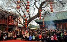 胡小师:辛苦忙碌了一年春节怎么过?