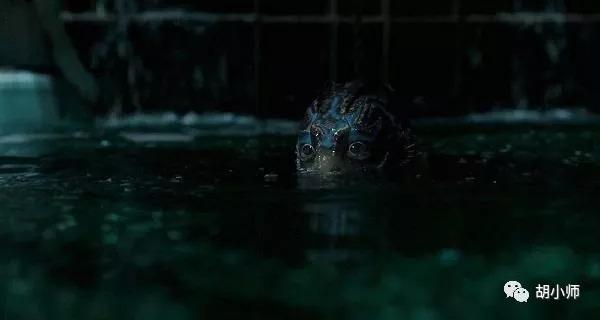 胡小师:从《女儿国》票房惨淡到《水形物语》奥斯卡夺冠,浅谈中国电影现状与未来